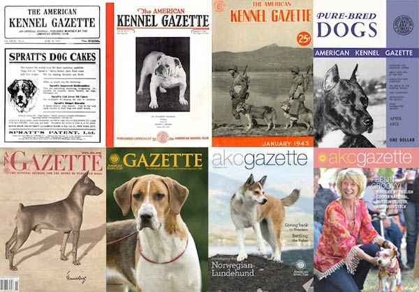art file gazette covers